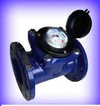 Đồng hồ nước Pmax Malaysia